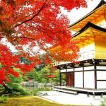 【刀剣乱舞】新マップに「京都」の追加が決定!